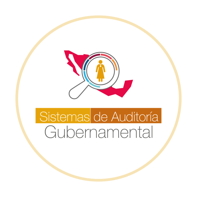 AuditoriaGuber_logo_2020